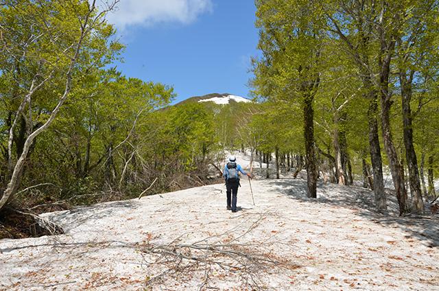 Mount Kodake