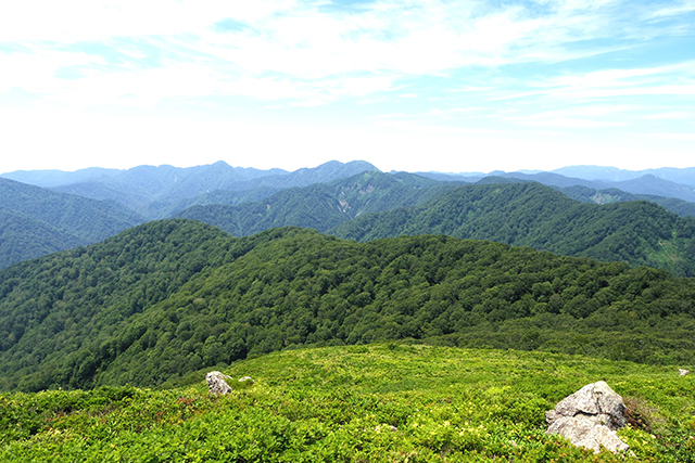 Shirakami-Sanchi - Natural World Heritage Site